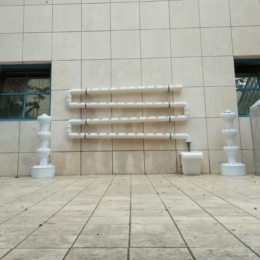 מערכת גידול ורטיקלית לתלייה על קיר בשיטת הNFT